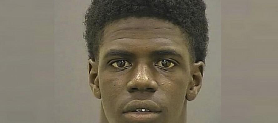 "Black Teens Yelling ""Hey White Boy"" Pummel White Lifeguard With Rocks in Baltimore"