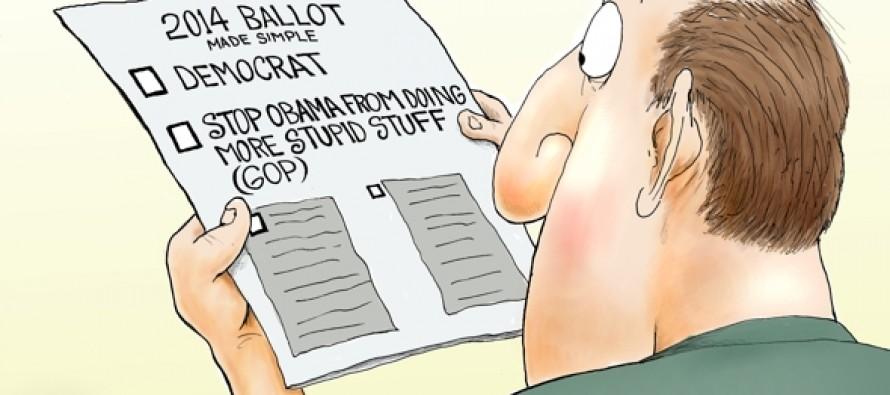 Midterm 2014 Elections (Cartoon)