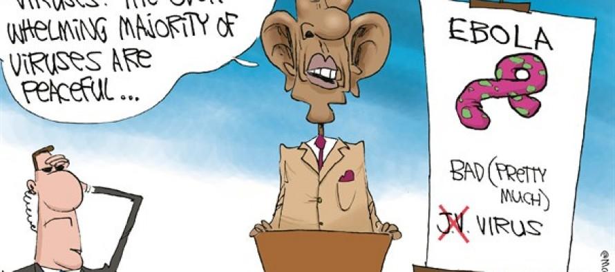 LOCAL IL Narrative (Cartoon)