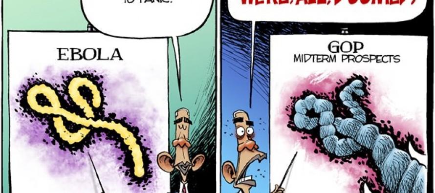 Midterm Mania (Cartoon)
