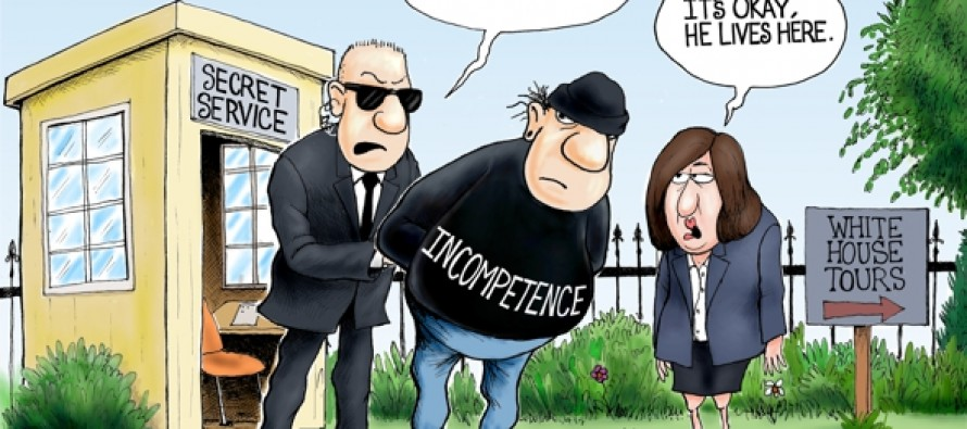 White House Fence Jumper (Cartoon)