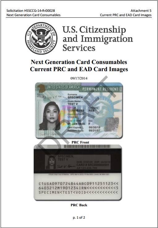 amnesty card