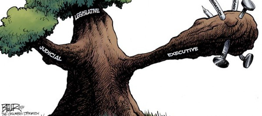 Branches of Government (Cartoon)