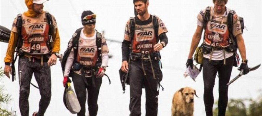 MELT your HEART!  This STRAY DOG races 430 miles to a better home latched onto an Extreme Sports team during DANGEROUS Amazon race!