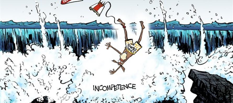 LOCAL OH – Democratic Wave (Cartoon)
