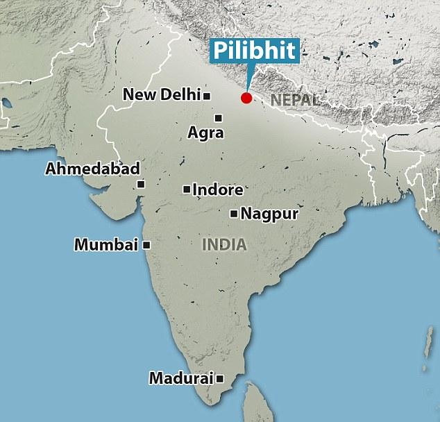 india murder