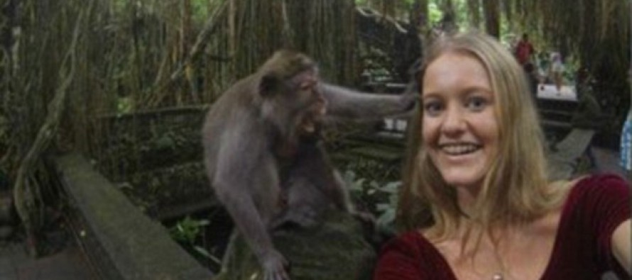 Who's a Cheeky Monkey? Tourist's Selfie With Primate Goes Wrong as Frisky Animal Pulls on Her Hair