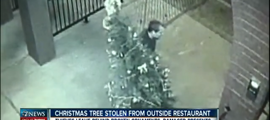 2 'Grinches' stole a restaurant's Christmas tree: restaurant CAUGHT the crime on VIDEO