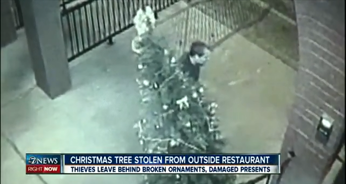 stealing christmas tree