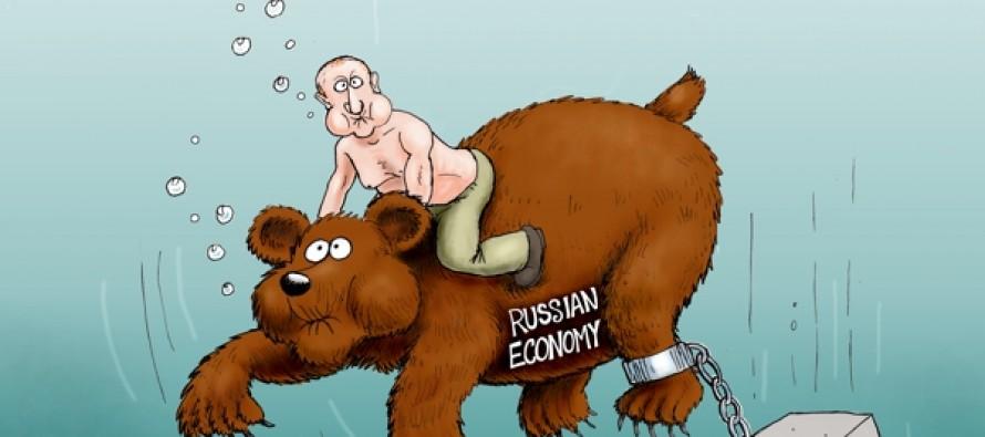 The Bear Is Loose (Cartoon)