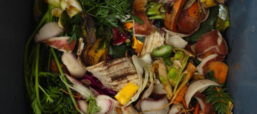 Not Kidding: Seattle Residents to Be FINED for Throwing Food in the Garbage