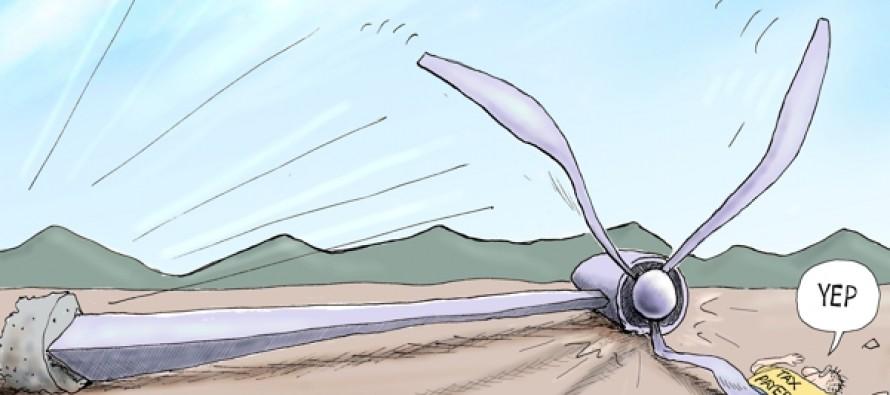 Wind Fall (Cartoon)