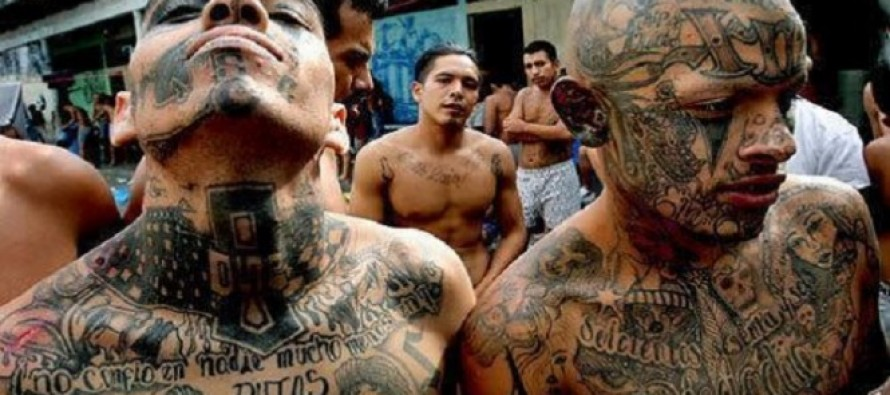 Sen. Chuck Grassley Introduces Legislation to Stop 'Catch and Release' Policy for Dangerous Illegal Immigrants