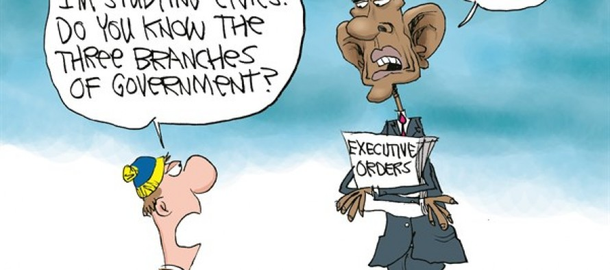 Obama's 3 Branches of Govt (Cartoon)