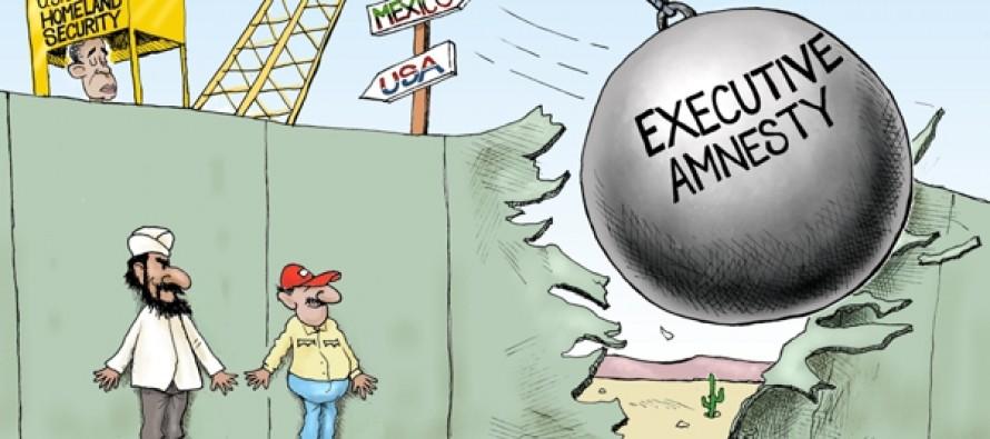 Homeland Insecurity (Cartoon)