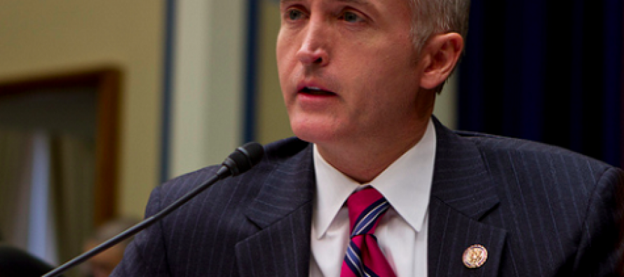 Trey Gowdy WARNS Dems to 'Be Careful What You Do' on Immigration VIDEO