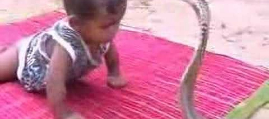 VIDEO: What Were These Parents Thinking?!