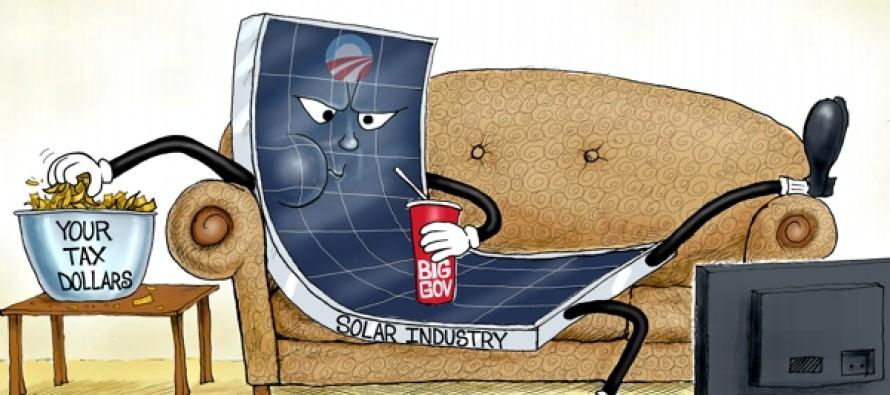 Solar Loafer (Cartoon)