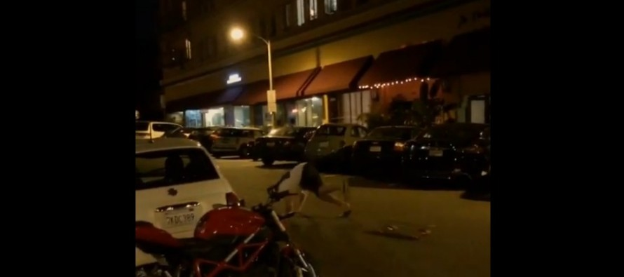 VIDEO: This is Why Skateboarding While Drunk is a Bad Idea