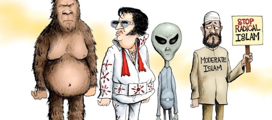 Rare Sightings (Cartoon)
