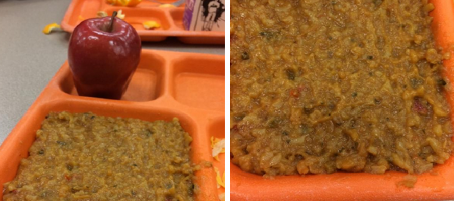 Pigs Eat Free! Michelle Obama's School Lunches Tossed by Kids, End Up in Farm Animals