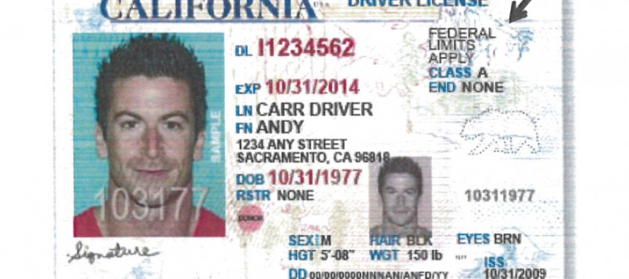 VIDEO: States are Flouting the Post-9/11 ID Law, Giving Cards to Illegal Immigrants That Mirror Licenses