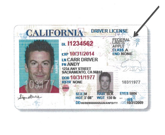 california illegal ID