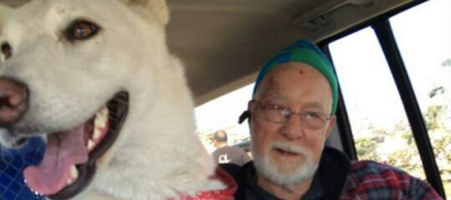 Man left a widower and homeless after tornado is reunited with missing dog