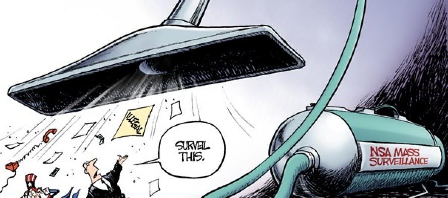 NSA Sucks (Cartoon)