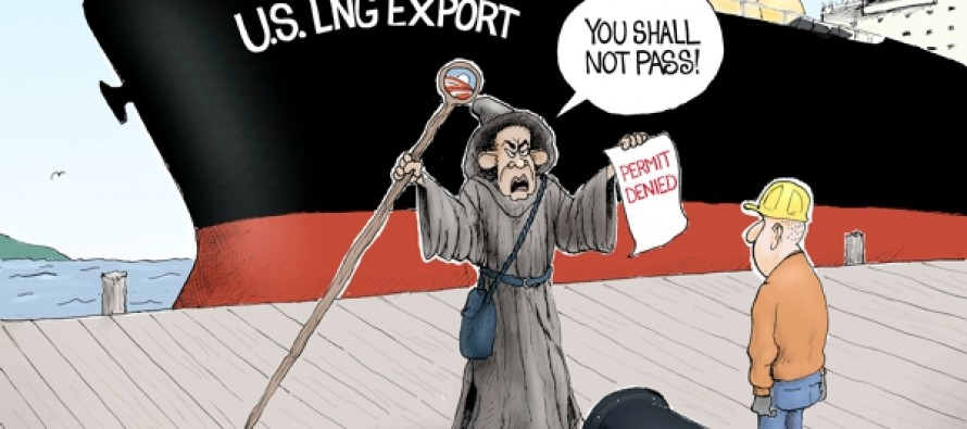 Obama NEPA (Cartoon)