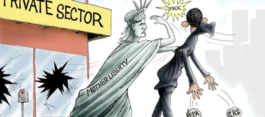 Obama Economic Policies (Cartoon)