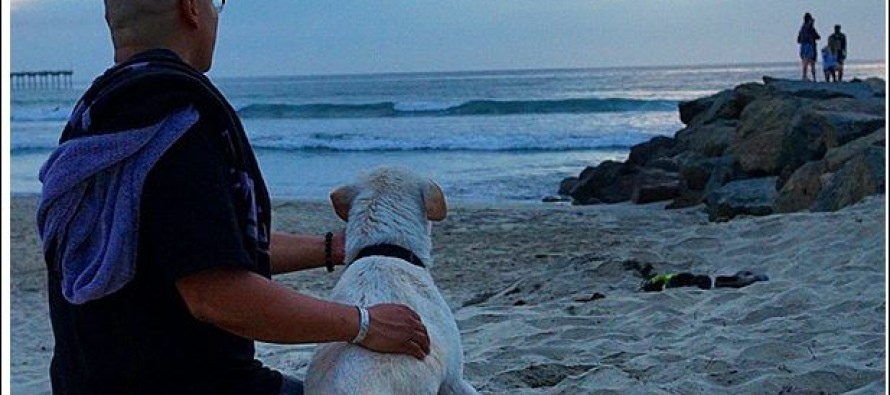 Human Gives Man's Best Friend One Last Cross-Country Adventure