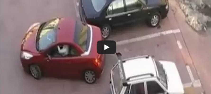 [VIDEO] A woman has her spot stolen.  You'll never guess what she does next!