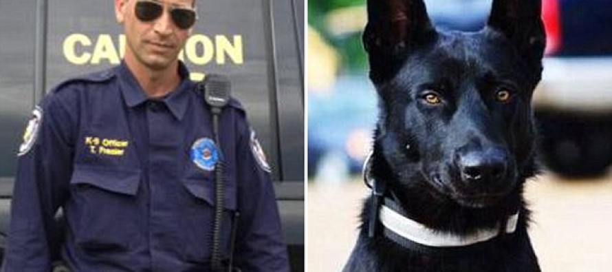 Police Officer is 'Dragged Into the Woods to Be Killed by Three Men'; Is Saved When His K-9 Chased After Him and Sends the Attacker Running