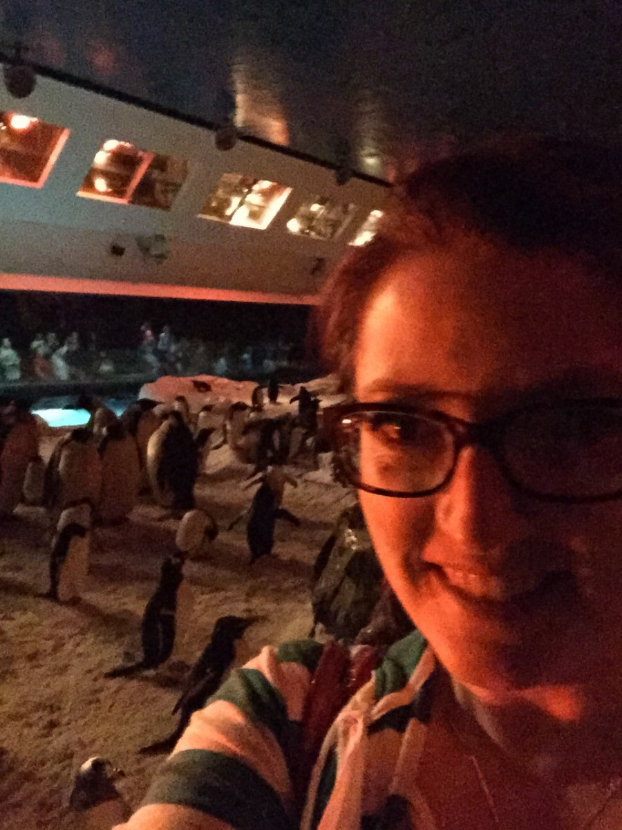 Selfie with the Penguins Behind-the-Scenes