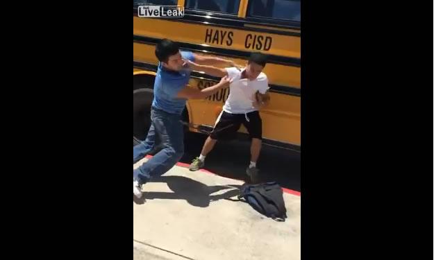 KO fight