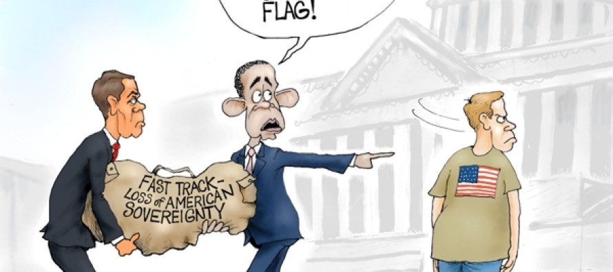 Confederate Flag (Cartoon)