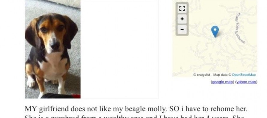 His Girlfriend Said He Had To Get Rid Of His Dog, So He Posted This Ad On Craigslist