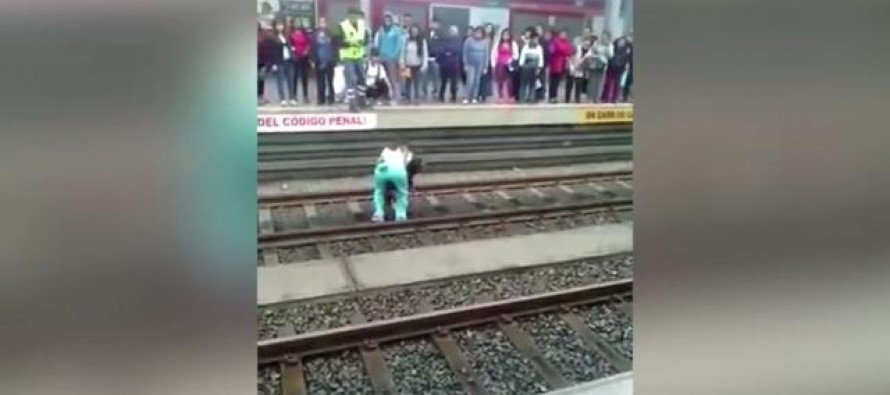 Woman Facing Jail Time After Saving Dog From Train Tracks