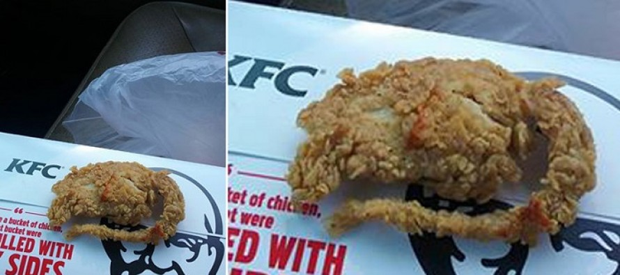 This Man Claims KFC Served Him a Fried Rat and He Has a Picture. What Do You Think?
