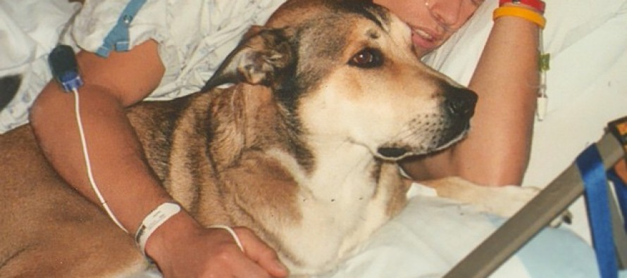 Unbreakable bond: Cancer-stricken man makes beautiful video tribute to his dog
