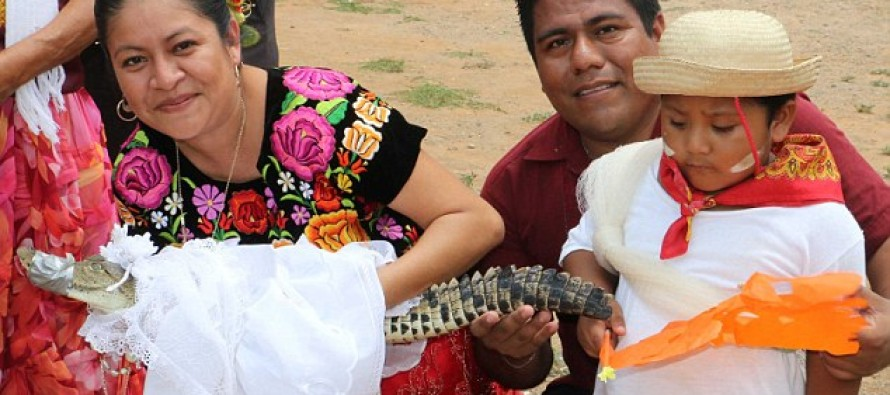When will this be coming to America? Mexican mayor marries ALLIGATOR princess [Video]