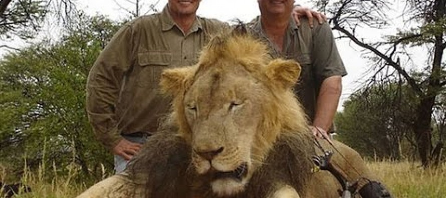 PETA Wants Lion-Hunting American Dentist Hanged [Video]