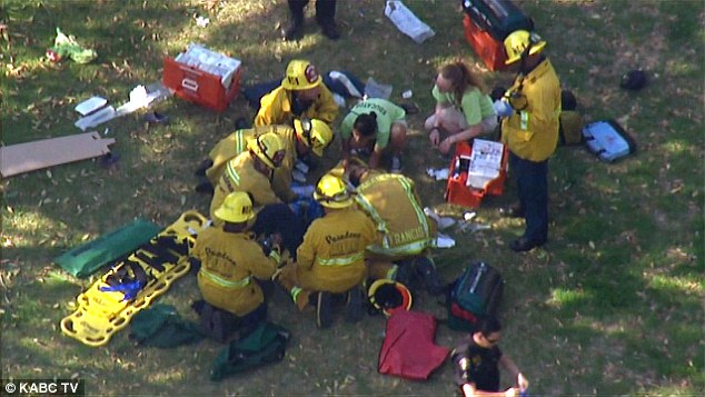 The falling tree injured eight children, at least two of them critically, according to fire officials in Pasadena.
