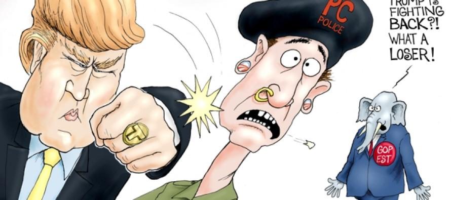 Donald Trump (Cartoon)