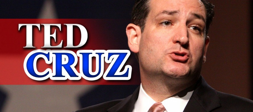 Ted Cruz Shuts Down Immigration Activist Using ONE Question