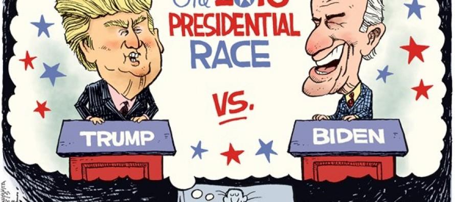 Trump vs Biden (Cartoon)
