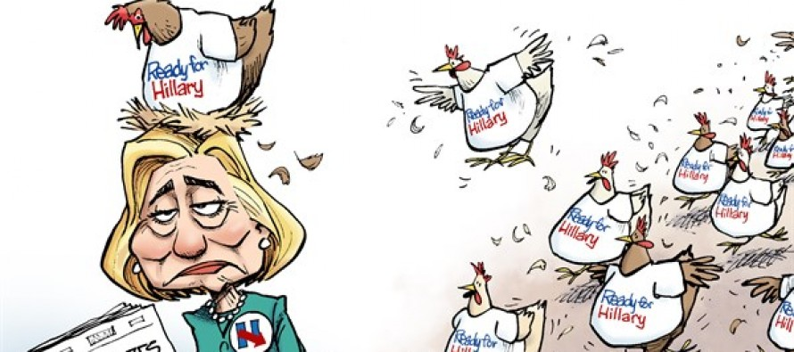 Hillary Chickens (Cartoon)