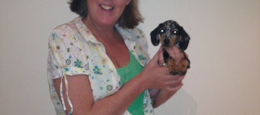 Confession of woman Who Got Rid of 4 Dogs: I Get Rid of Dogs as Soon as They Stop Being Puppies