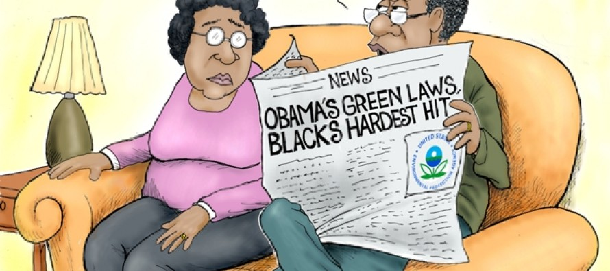 EPA Power Plan (Cartoon)